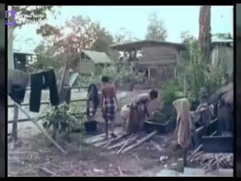 อีสานในอดีต วิถีชีวิตของคนอีสานบ้านเฮาเมื่อ50ปีก่อน ภาพเก่าๆที่หาดูยาก