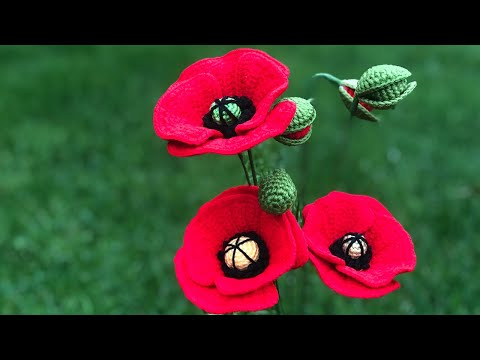Crochet Poppy Flower Tutorial from YouTube · Duration:  1 hour 13 minutes 3 seconds