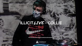 illicit Live - Collie