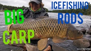 Catching BIG carp on ICE FISHING RODS