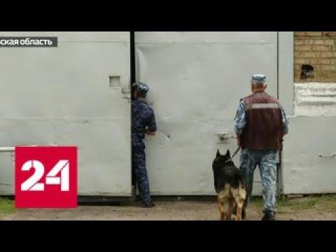 Мужчина, несправедливо осужденный за хранение наркотиков, намерен добиться компенсации - Россия 24