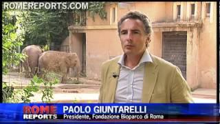 El zoo de Roma lanza recorrido sobre los animales de la Biblia