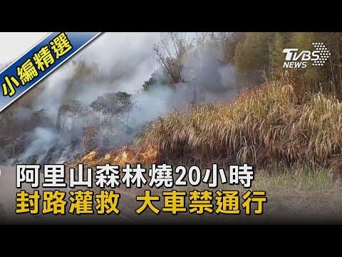 阿里山森林燒20小時 封路灌救 大車禁通行 TVBS新聞