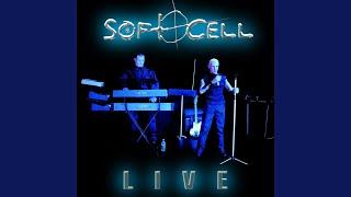 The Night (Live 2003)