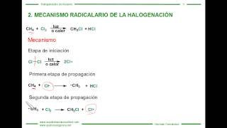 Mecanismo de la Halogenación de Alcanos