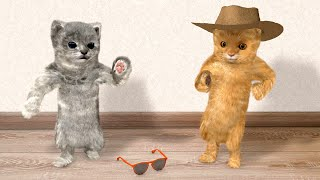 Two dancing cats