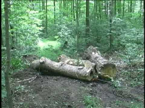 Ideas for Cart and Winch to Pull Firewood Uphill