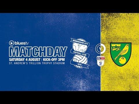 Highlights: Blues 2 Norwich City 2 | Sky Bet Championship