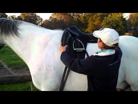 Correct gullet widths in saddles