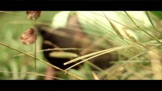 Electrique Djs - Brikicho (Hide N Seek) ft. Fena & Jaaz (Official Video)