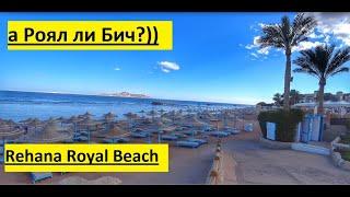 Египет Шарм Эль Шейх Rehana Royal Beach Resort обзор пляжа
