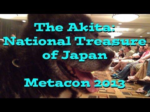 The Akita: National Treasure of Japan - Metacon 2013