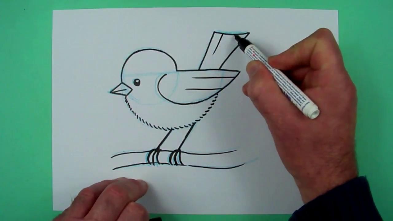 Vogel Zeichnen Mit Genauer Anleitung Zeichnen Fur Kinder Youtube