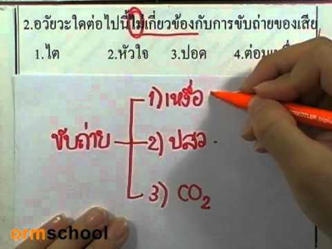 ข้อสอบเข้าม.1 : วิทยาศาสตร์ ตอน2