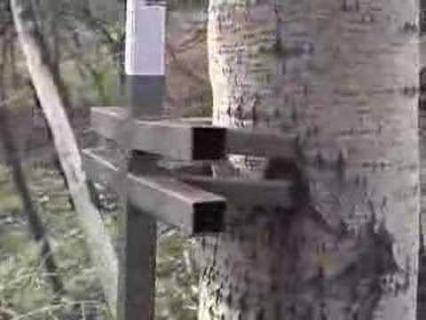 Gorilla Climbing Sticks Youtube
