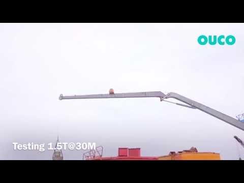 Customer Design 1T30M Marine Knuckle Boom Pedestal Crane