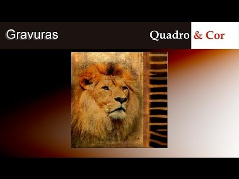 Quadroecor gravura elegant safari iv lion youtube