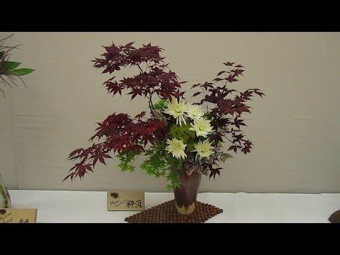 Cupertino Cherry Blossom Festival 2017 - Wafu Ikebana