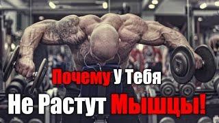 видео Не растут мышцы? Что делать? Денис Гусев