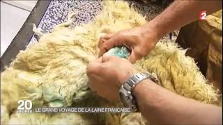 La filière laine