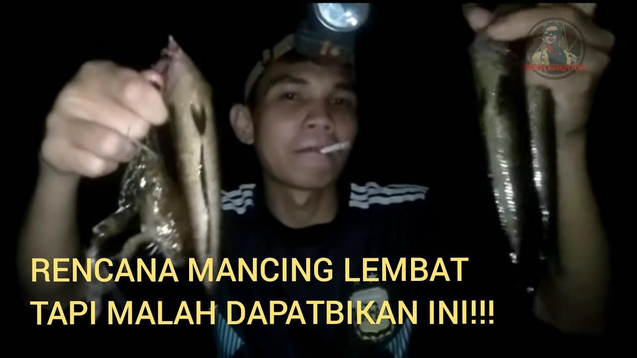 MANCING DI SPOT LEMBAT EH MALAH DAPAT GABUS | # ...