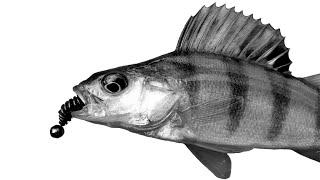 Поймать окуня может каждый Рыбалка с Нано Джигом