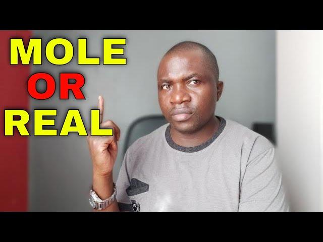 Moses Kuria | Trojan Horse for Uhuru Kenyatta or True Supporter of the William Ruto?