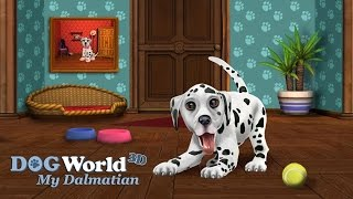 DogWorld 3D My Puppy Tivola Android İos Free Game GAMEPLAY VİDEO