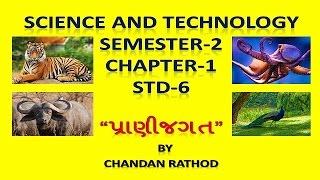 std 6 sem 2 science and technology chapter 1 prani jagat