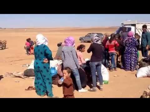 Kobanê border - kurdish refugees (26/09/2014)
