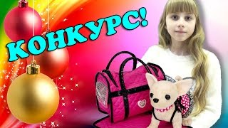 Чи Чи Лав собачка подарок на Новый Год КОНКУРС Chi Chi Love Simba Распаковка игрушки