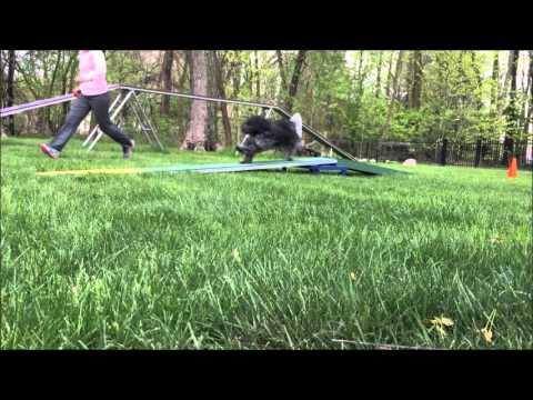 April 28 yoga mat foot target