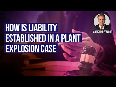 How is liability established in a plant explosion case?