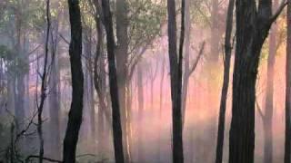 "Honegger: Symphony  #4, ""Deliciae Basilienses"" - I Lento emisterioso - Allegro"