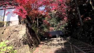 BGM:「たかのははるか」SHW http://shw.in 大阪府と京都府の境「天下分...