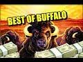 🐃 🐃 🐃 Best of Buffalo Slots🐃 🐃 🐃