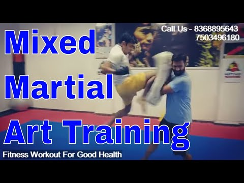 fitness workout with martial art training dwarka delhi