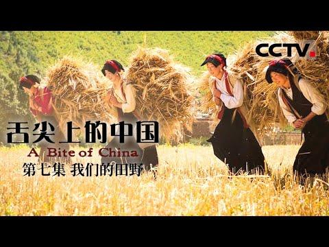舌尖上的中国 - 我们的田野