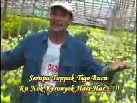 Alwi- Hari Ni Aku Suka(Oldies Hit)