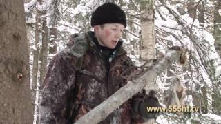 Охота на куницу с Николаем Галкиным.