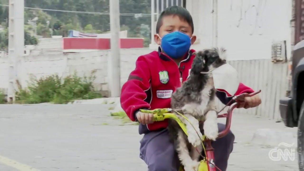 """""""Me pongo mascarilla para defenderme y a mi perrito también"""", dice niño de video viral"""