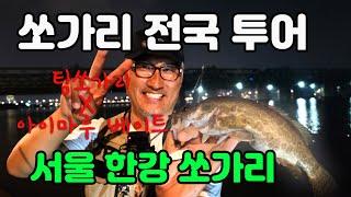 쏘가리 전국 투어 서울 한강편/ 아이마루 베이트 이병철 로컬마스터