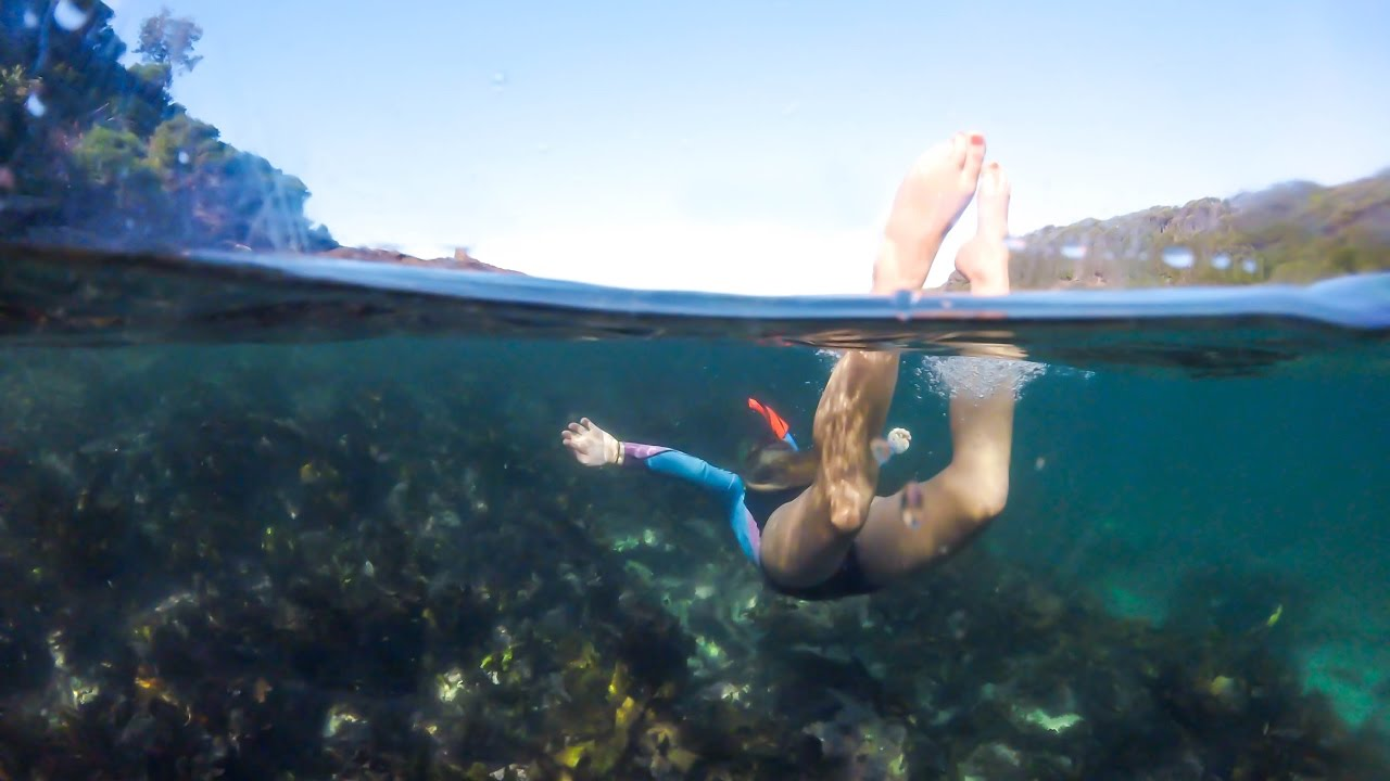 Snorkelling at Bushrangers Bay - YouTube