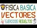 vectores ejercicios resueltos y teoría con ejemplos de física básica