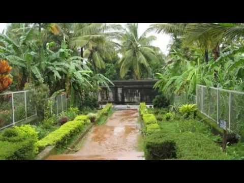 Wayanad - Best Places to visit