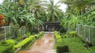 Wayanad - Best Places to visit