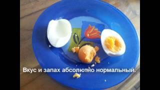 Варёное яйцо становится пластиковым