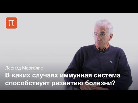 Иммунная активация и болезни человека — Леонид Марголис