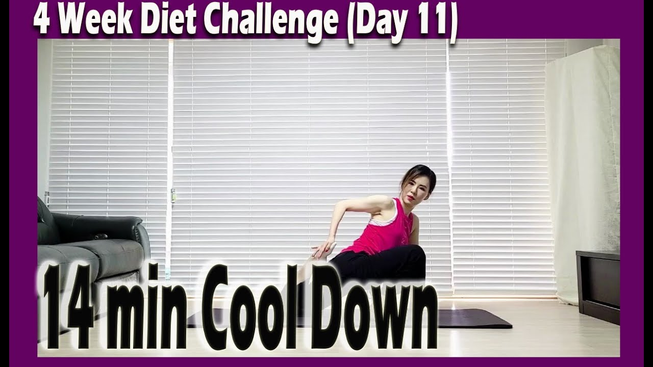 [4 Week Diet challenge] Day 11 | 14 minute Stretching Workout | 14분 스트레칭 | ABS | Sunny Funny Zumba