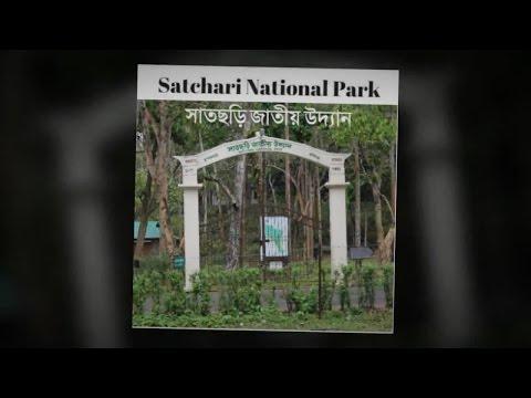 Satchari national park   safari   Eco park   Trail   Wildlife  Forest  Nature   Hobigonj  Bangladesh